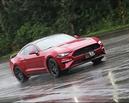 黑影快馬 Ford Mustang Black Shadow Edition